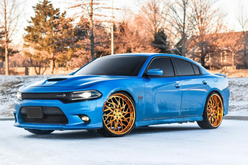 Dodge Charger On Blocco